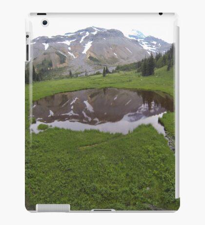 Washington Reflection iPad Case/Skin