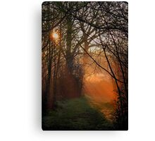 Seeing The Light Canvas Print