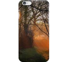 Seeing The Light iPhone Case/Skin