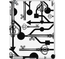 USB Key iPad Case/Skin