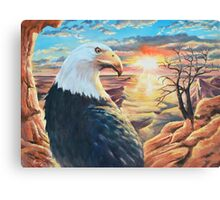 The bald eagle over the desert Canvas Print