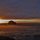 Gull Rock by Jan Carlton