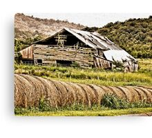 """""""Where Did the Years Go?""""... prints and products Canvas Print"""