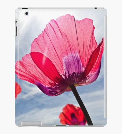 Poppies and Sky 2  iPad Case/Skin