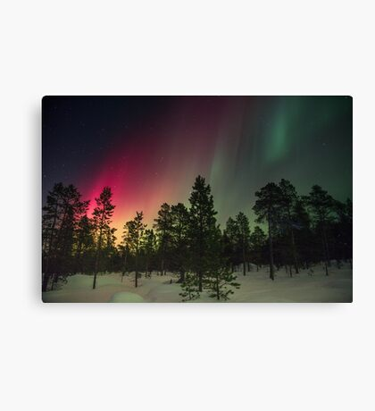Sky in the space Canvas Print