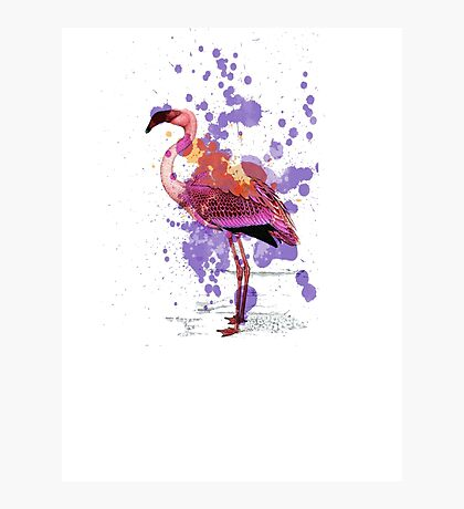 Flamingo Ride Photographic Print