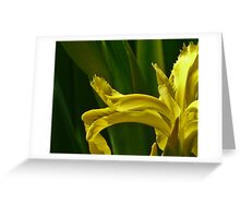 Jap iris art Greeting Card