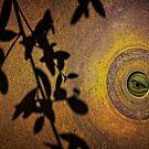 Green Peeper by CarolM