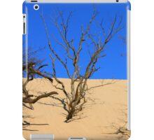 Mt. Baldy Sand Dune iPad Case/Skin
