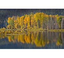 Autumn in the Tetons Photographic Print