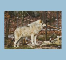 Solitary Timber Wolf Kids Tee