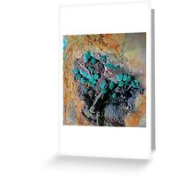 Fibrous Botryoidal Malachite with Barite Greeting Card