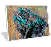 Fibrous Botryoidal Malachite with Barite Laptop Skin