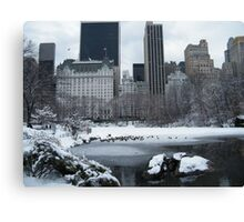 Central Park In Snow Canvas Print