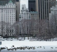 Central Park In Snow Sticker