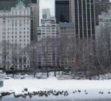 Central Park In Snow Sticker