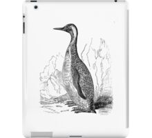 Vintage King Penguin Bird Illustration Retro 1800s Black and White Penguins Birds Image iPad Case/Skin
