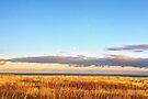 Sunset on Golden Field - Aberdeenshire, Scotland by Yannik Hay