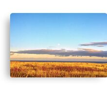 Sunset on Golden Field - Aberdeenshire, Scotland Canvas Print