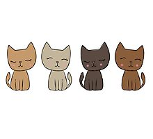 4 Little Kittens Photographic Print