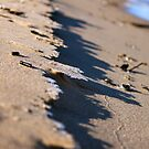 Sand and Ice by Joy Fitzhorn