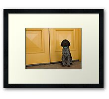 """Xena.... Beautiful Puppy. Framed Print"