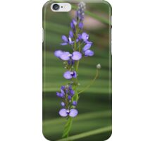 Comoesperma ciliatum iPhone Case/Skin