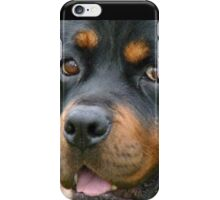 Devoted! - Rottweiler - Dog - NZ iPhone Case/Skin