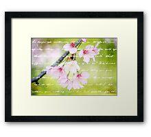 Pale Pink Sakura Cherry Blossoms Antique Handwritten Letter Framed Print