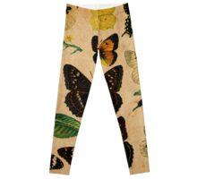 Vintage Butterfly Collection Leggings