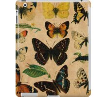 Vintage Butterfly Collection iPad Case/Skin