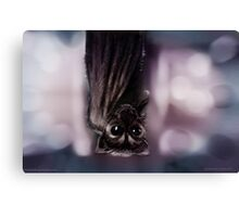 Bat Hanging Canvas Print