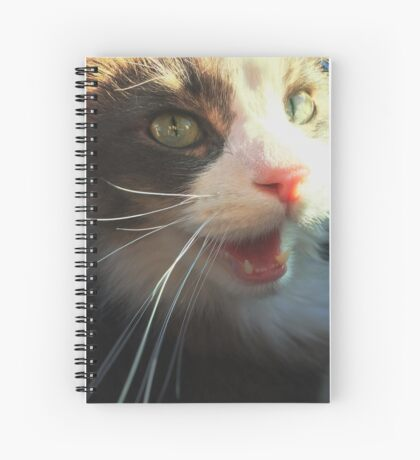 Cat Smiling Spiral Notebook