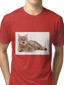 Red funny striped cat British Tri-blend T-Shirt