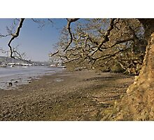 Low Spring Tide At Mylor Creek Photographic Print