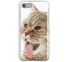 Red funny striped cat British iPhone Case/Skin