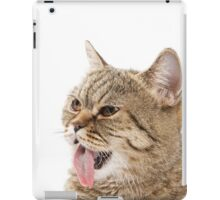 Red funny striped cat British iPad Case/Skin