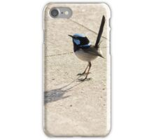 Superb Male Fairy Wren and it's Shadow iPhone Case/Skin