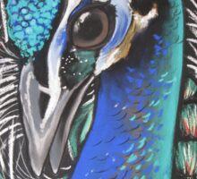 Peacock Blue Sticker