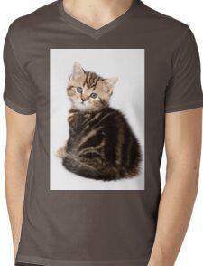 Striped cute  fluffy kitten Mens V-Neck T-Shirt