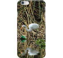 Great White Heron Next to Discarded Can iPhone Case/Skin