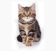 Fluffy little tabby kitten British cat One Piece - Long Sleeve