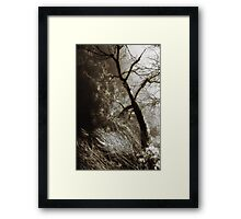 Beyond the Eyes Framed Print