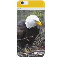 US Bald Eagles, President and First Lady iPhone Case/Skin
