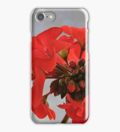 Cardenal Rojo ............................. iPhone Case/Skin