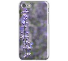 Single lilac iPhone Case/Skin