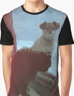 'Cat and Dog'  Graphic T-Shirt