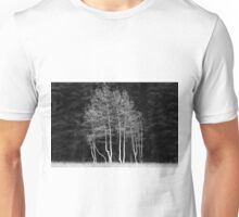 Maples, Kaibab Forest, USA Unisex T-Shirt