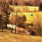 """""""A Creek Runs Through It""""... prints and products by © Bob Hall"""