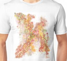 Phase transition Unisex T-Shirt